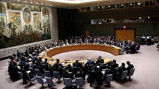 UNO-Sicherheitsrat beschliesst Feuerpause