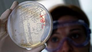 Bakterien bedrohen die Menschheit