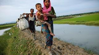 UNO spricht von «ethnischer Säuberung» in Burma