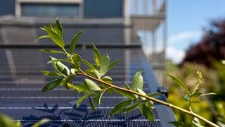 Solaranlagen auf dem eigenen Dach lohnen sich weniger