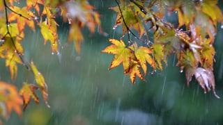 Regen kommt am Wochenende