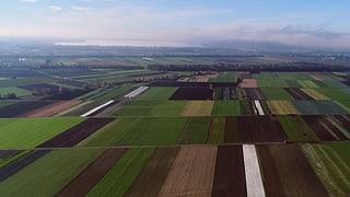 So soll der Gemüsegarten der Schweiz gerettet werden