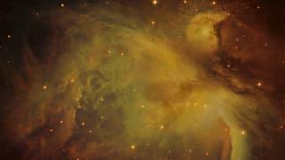 Schweizer Teleskop sucht nach Leben im All
