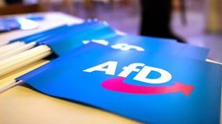 «Das Image der AfD leidet nur in kleinem Ausmass»