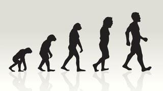 Evolutionstheorie und Astrologie