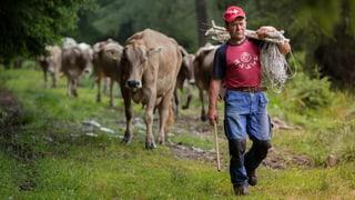 Lohndumping in den Schweizer Alpen