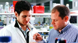 Krebsforscher schauen Zellen beim wandern zu