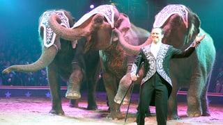Keine Elefanten-Nummern mehr im Circus Knie