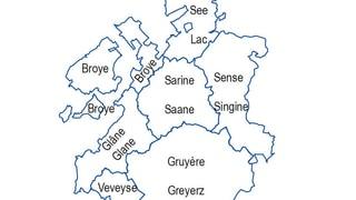 Die Freiburger Kantonsregierung will erst die Rollenverteilung klären