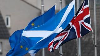 Schottische Regierung droht mit neuem Referendum