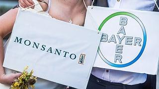 Sechs Milliarden Euro neues Kapital für Kauf von Monsanto