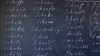 Schule Aargau: In den ersten zwei Schuljahren nur noch Dialekt
