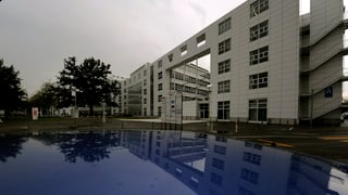 Finanzdepartement: Privilegien für Expats sollen bleiben