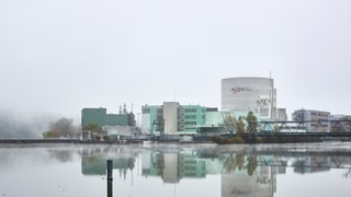 Critica envers la revisiun davart energia atomara