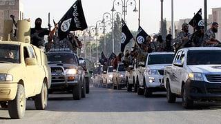 60 Dschihadisten aus Deutschland getötet