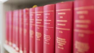 Schweizer Steuerverwaltung durchforstet die «Panama Papers»
