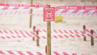 Mit der Kraft der Maschine gegen Landminen. Das ist das Ziel des Schweizers und seiner Stiftung Digger.