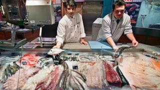 Eine Übersicht über die Fisch-Umweltlabels