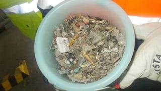 Plastik, der Brennstoff der Zukunft (Artikel enthält Audio)