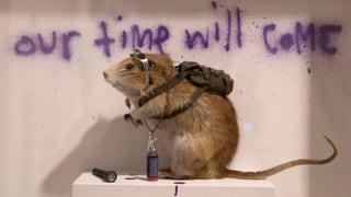 Unkonventionell, unautorisiert: Banksy-Ausstellung in London