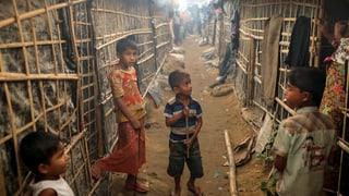 Wie Drogenkartelle die Rohingya als Transportesel missbrauchen