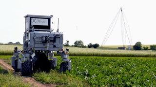 Mehr Technik, weniger Pestizide: Wenn Roboter Unkraut jäten