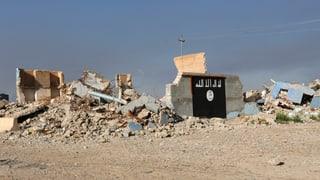 «Der Islamische Staat könnte bald zusammenbrechen»