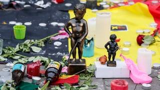 Anschläge in Brüssel: Was bisher bekannt ist