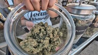 Bund verweigert Berner Cannabis-Studie grünes Licht