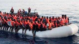 «Vorteile von Völkerwanderungen besser nutzen»