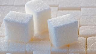 Zuckerlobby manipulierte Forschung
