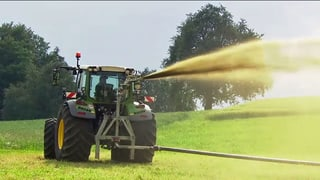 Ammoniak-Emissionen belasten Umwelt massiv