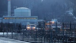 AKW Mühleberg: Greenpeace kritisiert die Behörden scharf