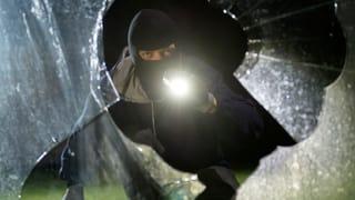 Die wichtigsten Fragen zur «Software gegen Einbrecher»