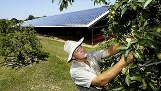 Vom Landwirt zum Energiewirt: Fenaco steigt ins Solargeschäft ein