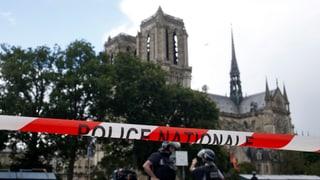 Paris: Attatga sin polizist tar baselgia Notre Dame