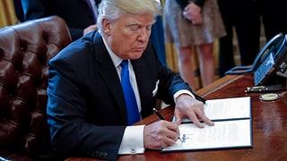 Trump gibt grünes Licht für umstrittene Öl-Pipelines