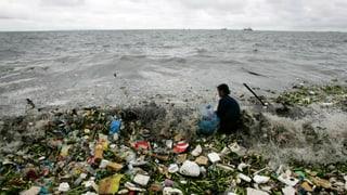 Lärm und Plastik setzen den Weltmeeren zu