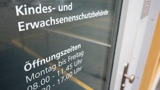 Schwyzer Regierung lehnt KESB-Initiative ab