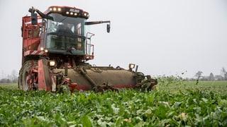 Thurgauer Bauern fürchten Preissturz beim Zucker