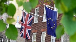 «Die Schweiz wird sich kaum auf Grossbritannien berufen können»