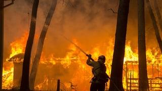 Trump dat la culpa a la California