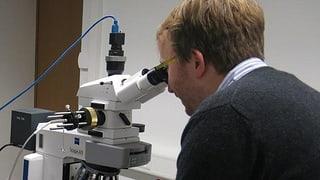 Grosser Entwicklungsschritt für die Nanotechnologie