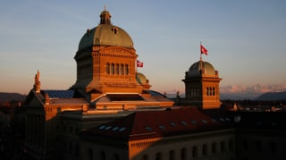 Wie die Währungs-Erdbeben den Wahlkampf 2015 beeinflussen