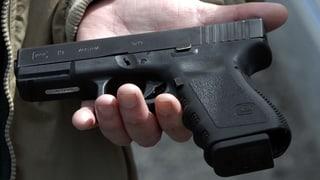 Kantone wollen Waffen nachregistrieren
