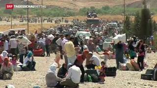 Neue Flüchtlingswelle von Syrien Richtung Irak