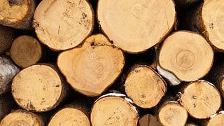 Aargauer Waldwirtschaft sieht rot