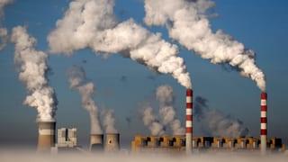 Darum lobt Greenpeace Schweizer Versicherungen