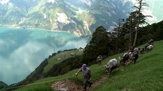 «Die Zentralschweiz ist eine Goldgrube für Filmemacher»
