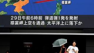 «Japan kommen Raketentests gerade recht»